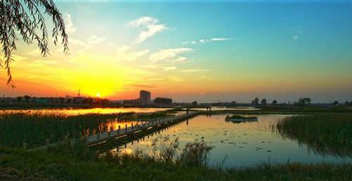 九龙口湿地1.jpg